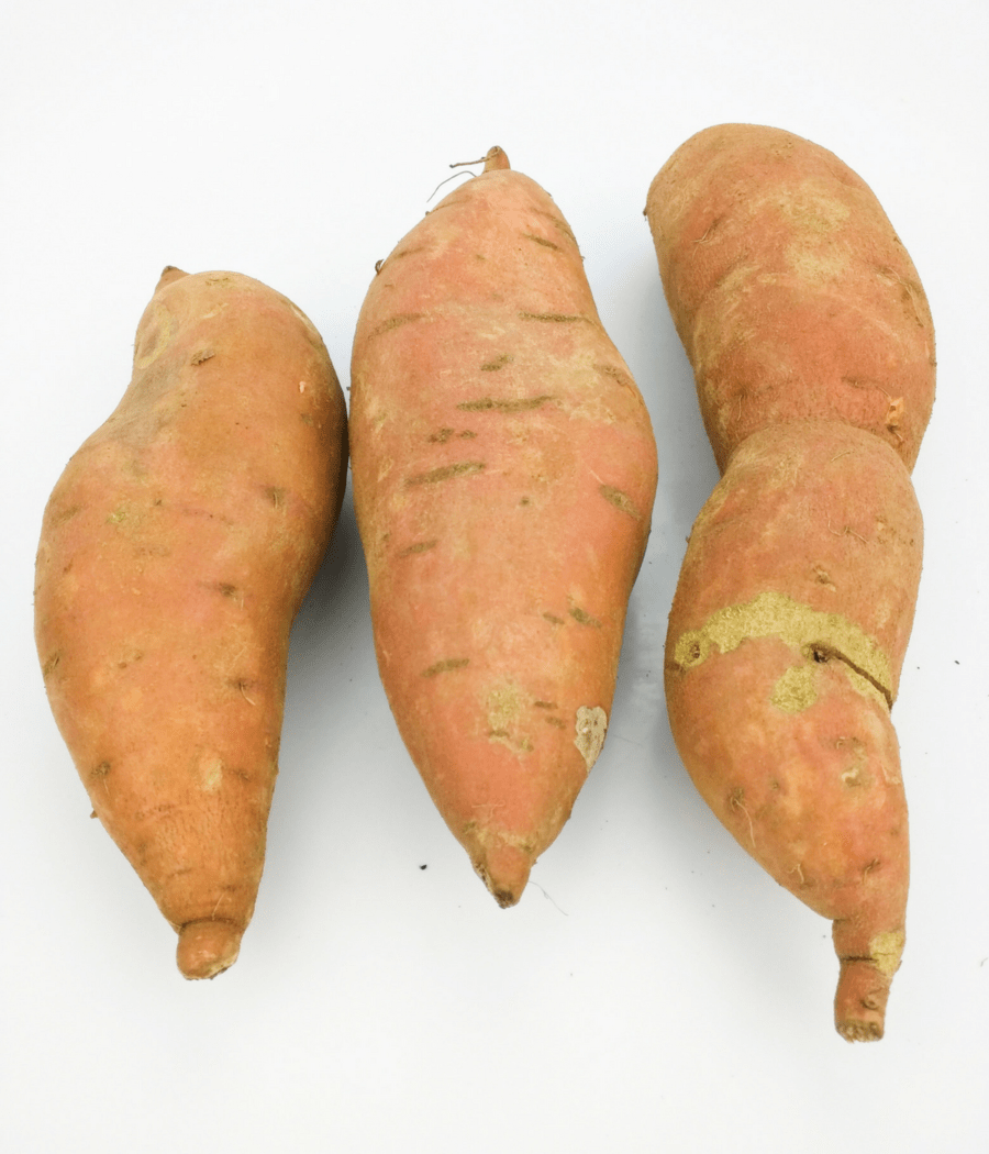 These sweet potatoes are not yams.