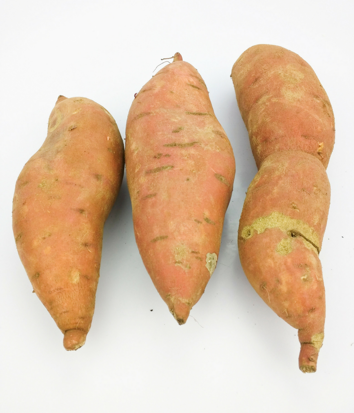 Salad toppers? Cook up some sweet potatoes and use them as a salad topping, along with prosciutto di parma, Swiss cheese, tarragon, and a scrumptious Dijon dressing--lectin free and Plant Paradox approved!