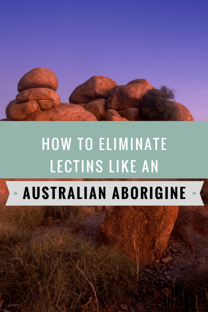 Discover how Australian Aborigines eliminated lectins from their diet through a painstaking process of washing, soaking, boiling, grinding, and roasting.