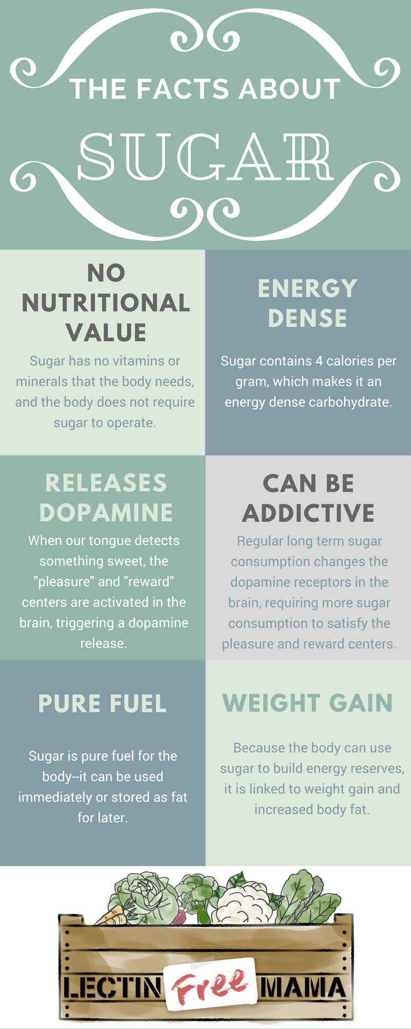 Discover the 6 best alternatives to sugar in this helpful post: learn how extracted glycosides, fructooligosaccharides, and sugar alcohols are made and how they digest differently in the body than sugar.