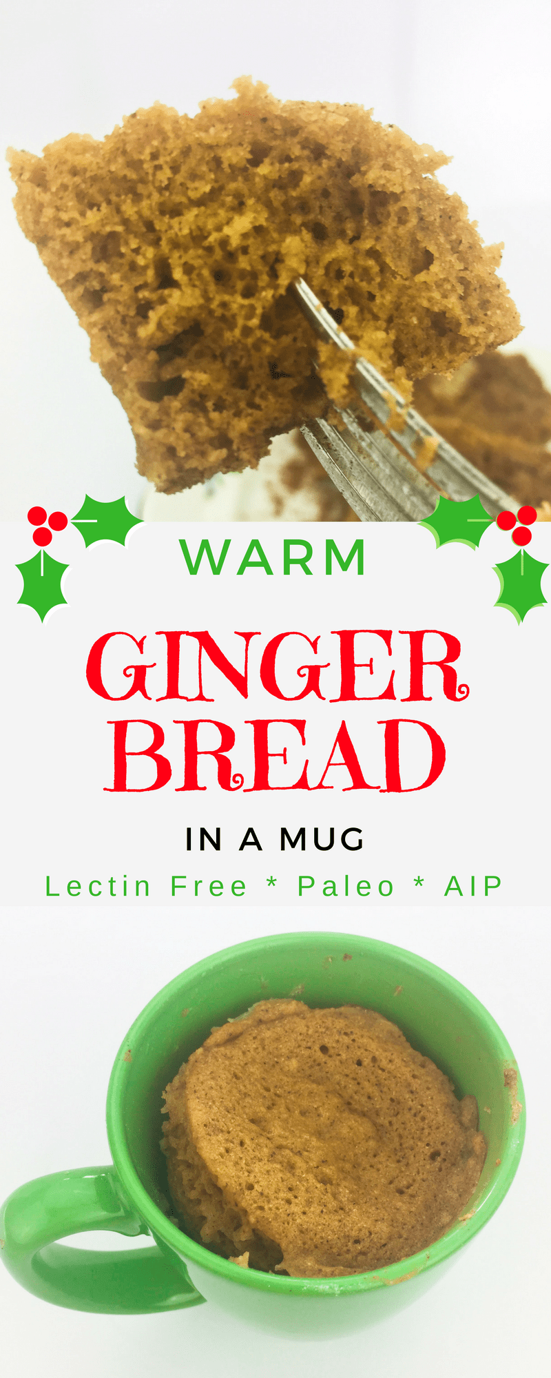 Give your gut some Christmas cheer with this warm, lectin-free gingerbread in a mug recipe: gluten free, grain free, casein free, and sugar free!