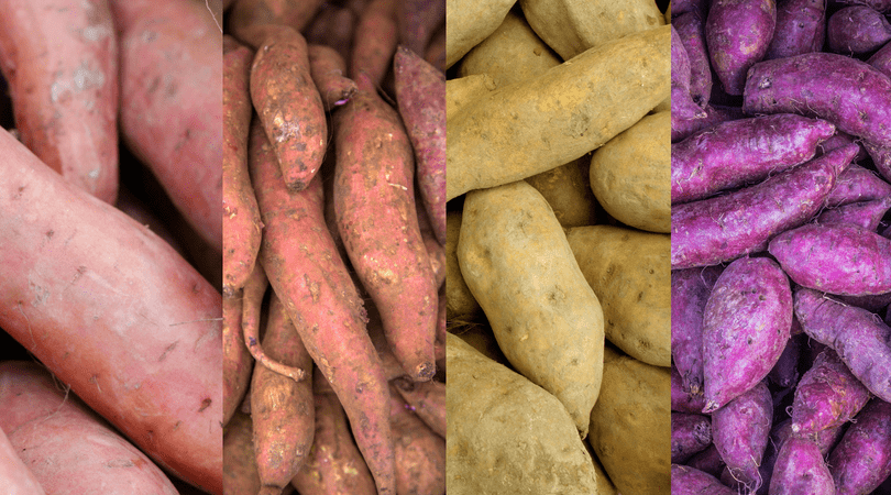 If you thought yams and sweet potatoes were the same thing, you're not alone. Read about the differences here.