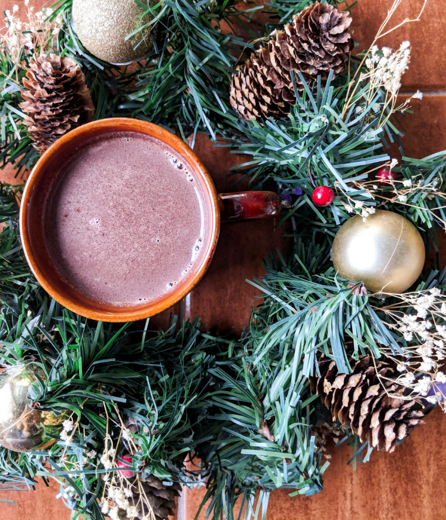 Make Plant Paradox approved hot cocoa that's as thick and rich as melted chocolate bars.