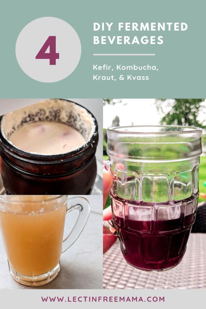 Four DIY fermented beverages for healing the gut: kefir, kombucha, kraut, and kvass.