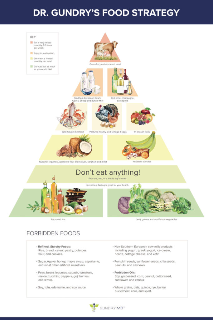 Dr. Gundry's food pyramid for the Plant Paradox diet.