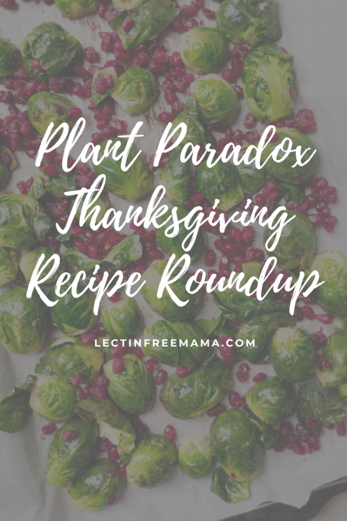 Plant Paradox Thanksgiving Recipe Roundup at lectinfreemama.com