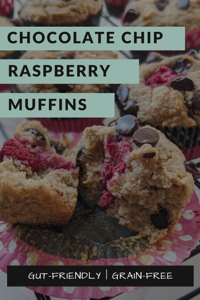 Lectin-free chocolate chip raspberry muffin broken in half on a cooling rack.
